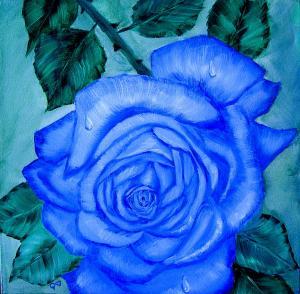 blue-rose-quwatha-valentine