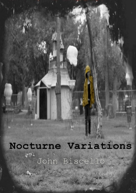 Nocturne Variations Bookcover copy