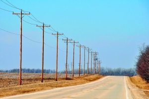 telephone-poles-1